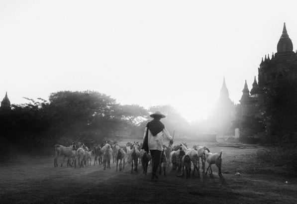 Burma_bagan-8