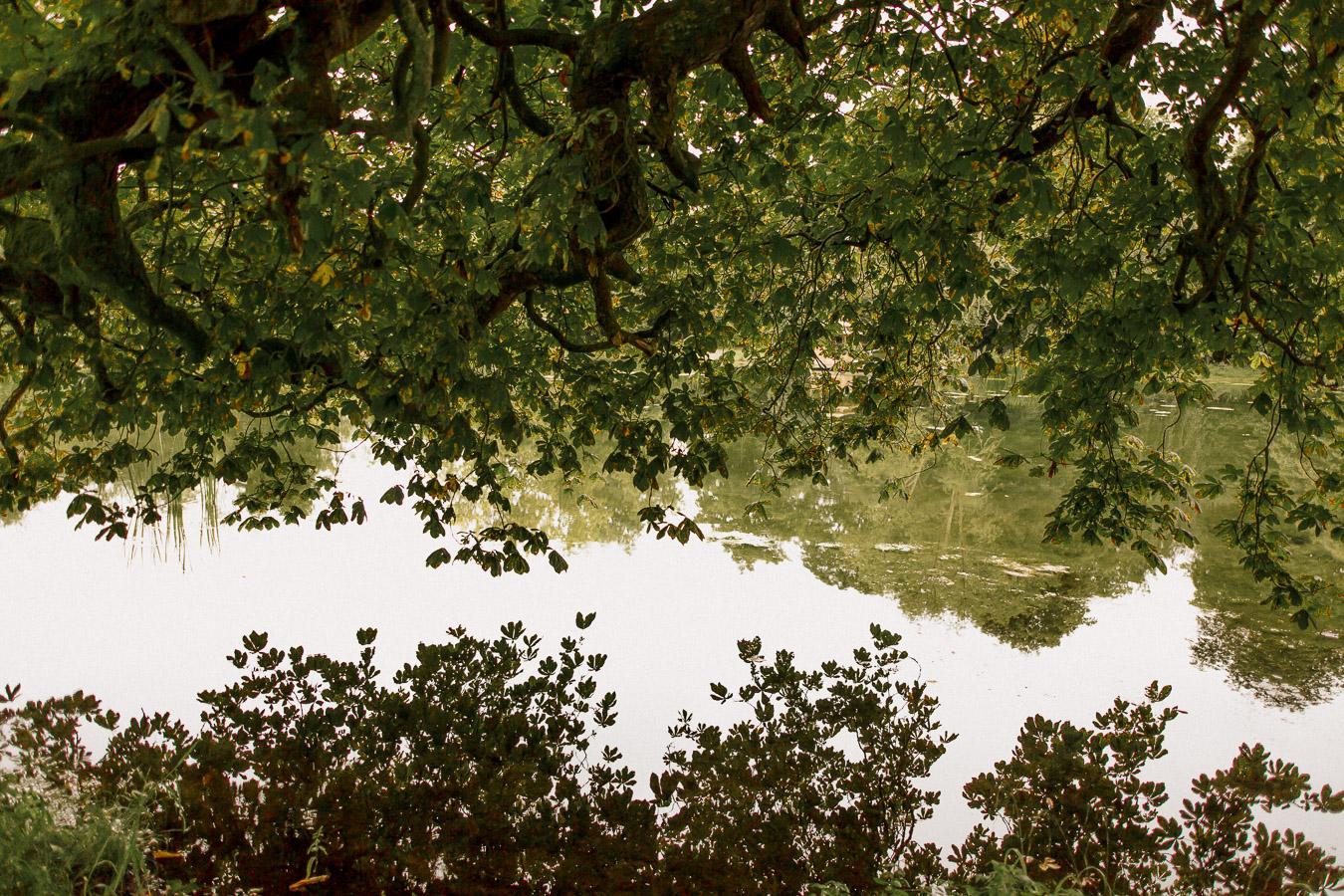 kilshane house lake